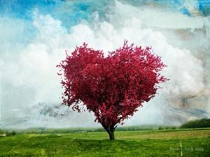 η ανυπόκριτη αγάπη